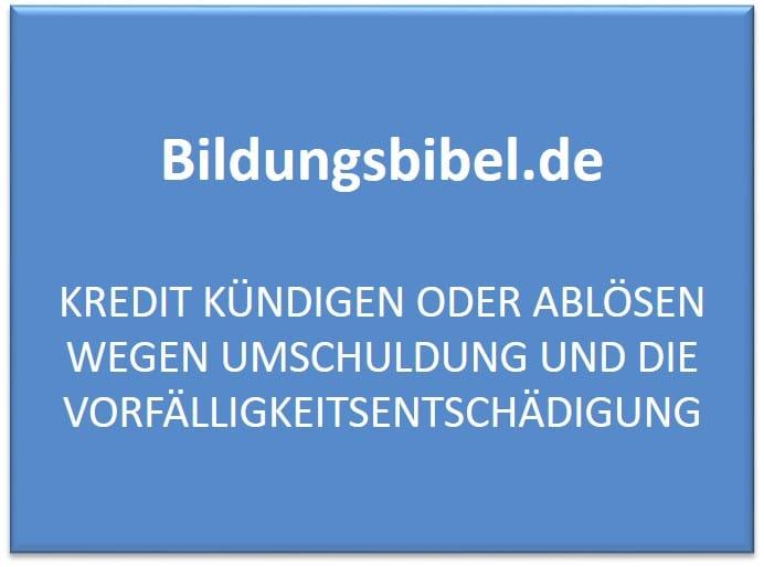 Den Kredit kündigen, ablösen oder umschulden, Darlehensnehmer und Darlehensgeber